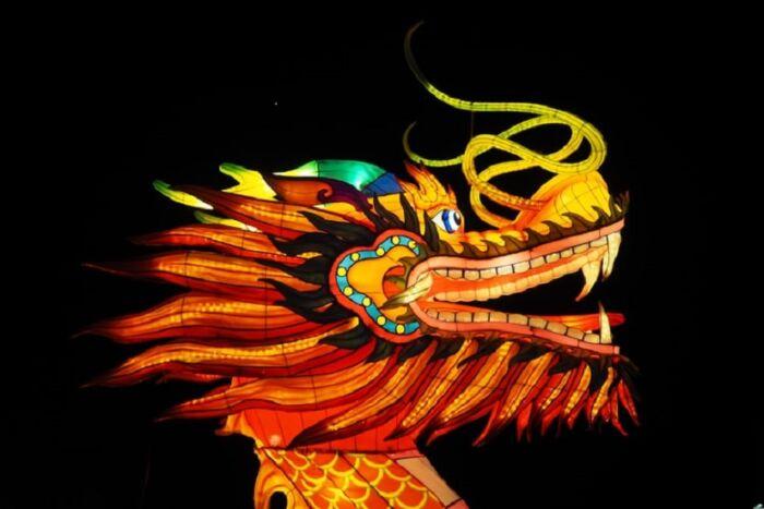 drago-Cina-capodanno