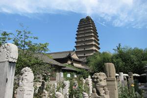 La pagoda della Piccola oca selvatica.